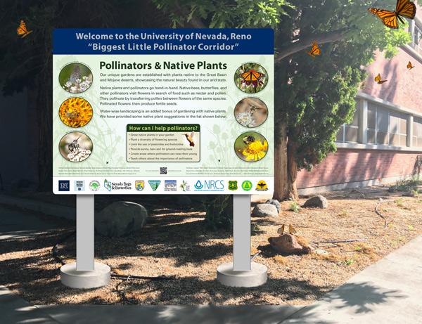 UNR Pollinator Corridor