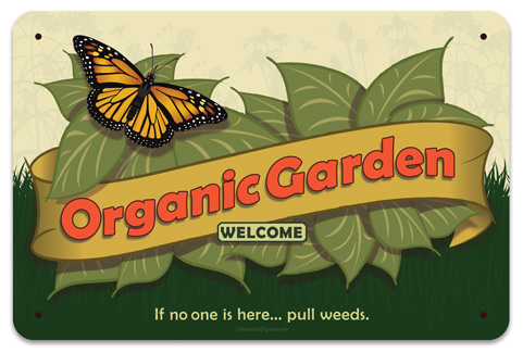 Organic Garden Monarch Butterfly